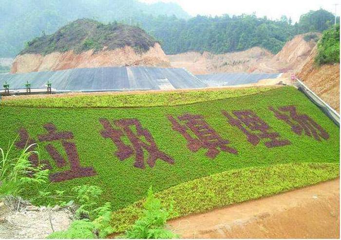 深圳市垃圾填埋场案例